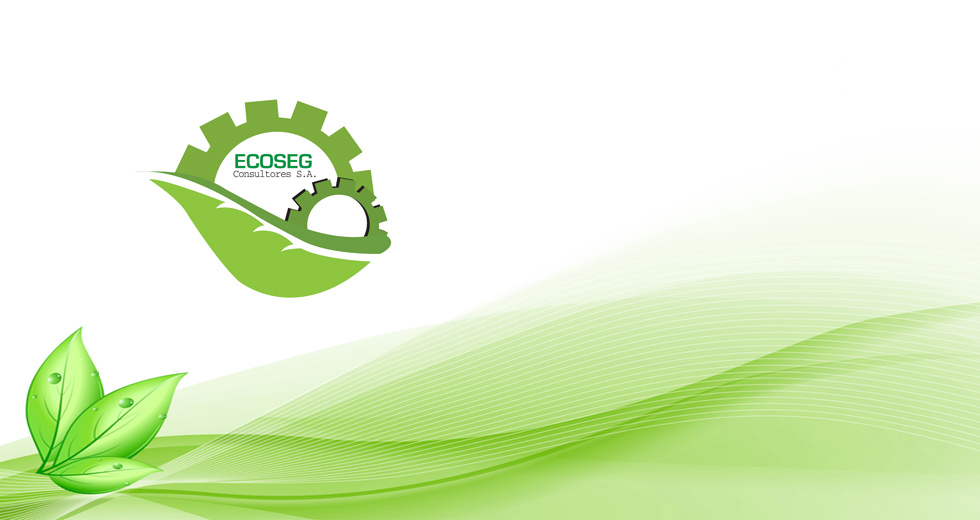 Ecoseg S.A.