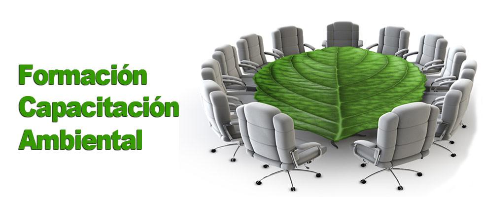 Formacion Ambiental Organizaciones