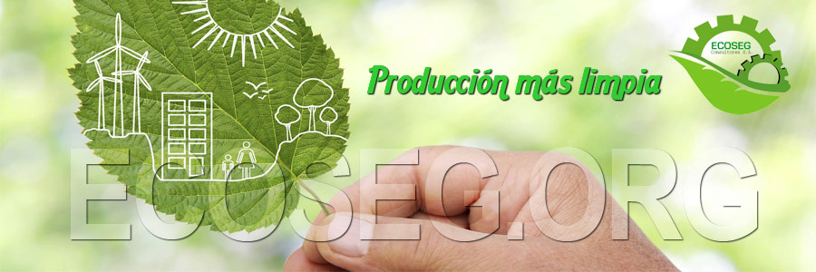 ECOSEG Consultores Ecoeficiencia