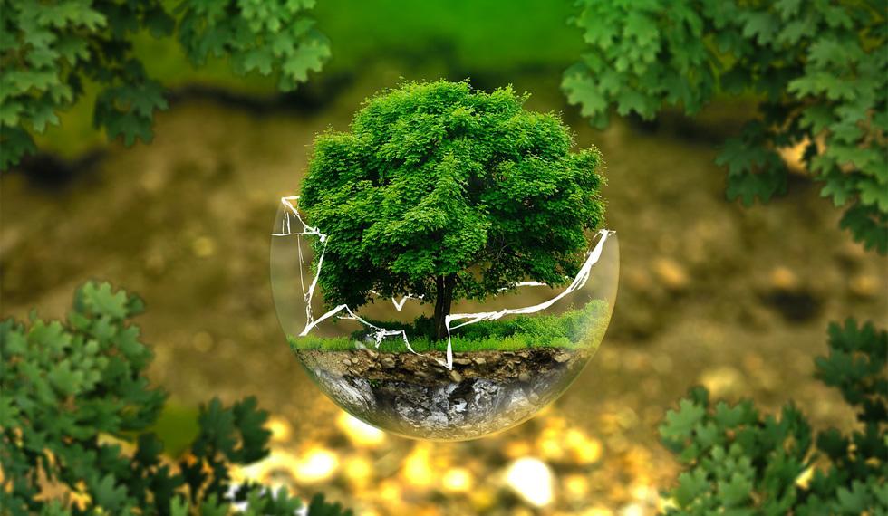Responsabilidad Social y Medioambiental