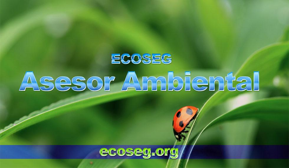 Asesor Ambiental Profesional