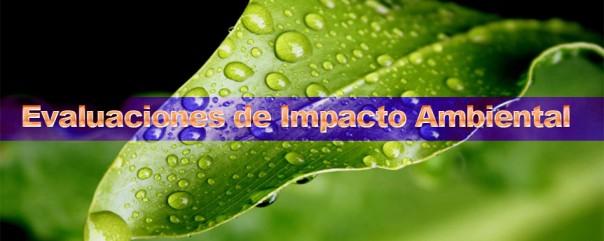 evaluaciones impacto ambiental