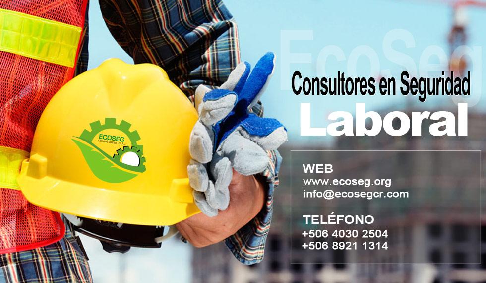 Consultores Seguridad Laboral