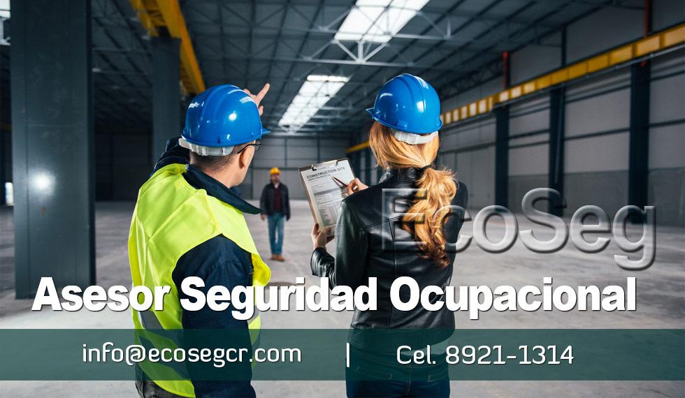 Asesor Seguridad Laboral