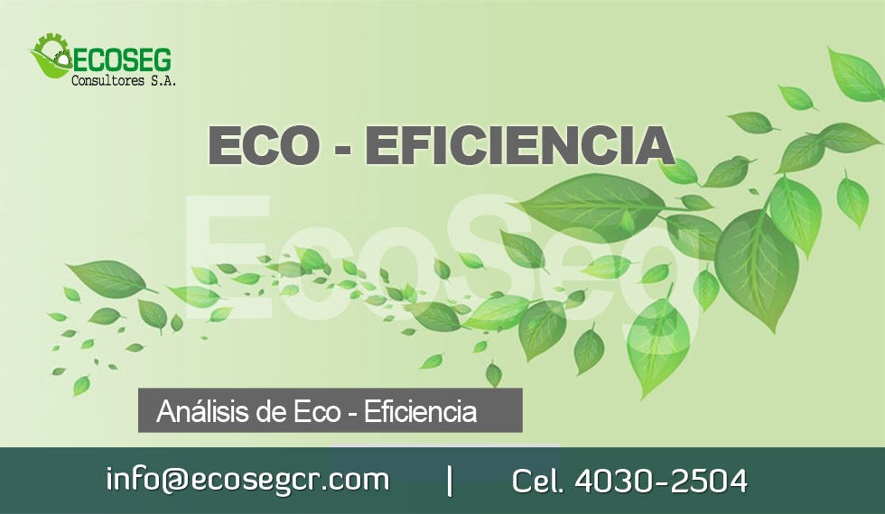 Importancia Ecoeficiencia
